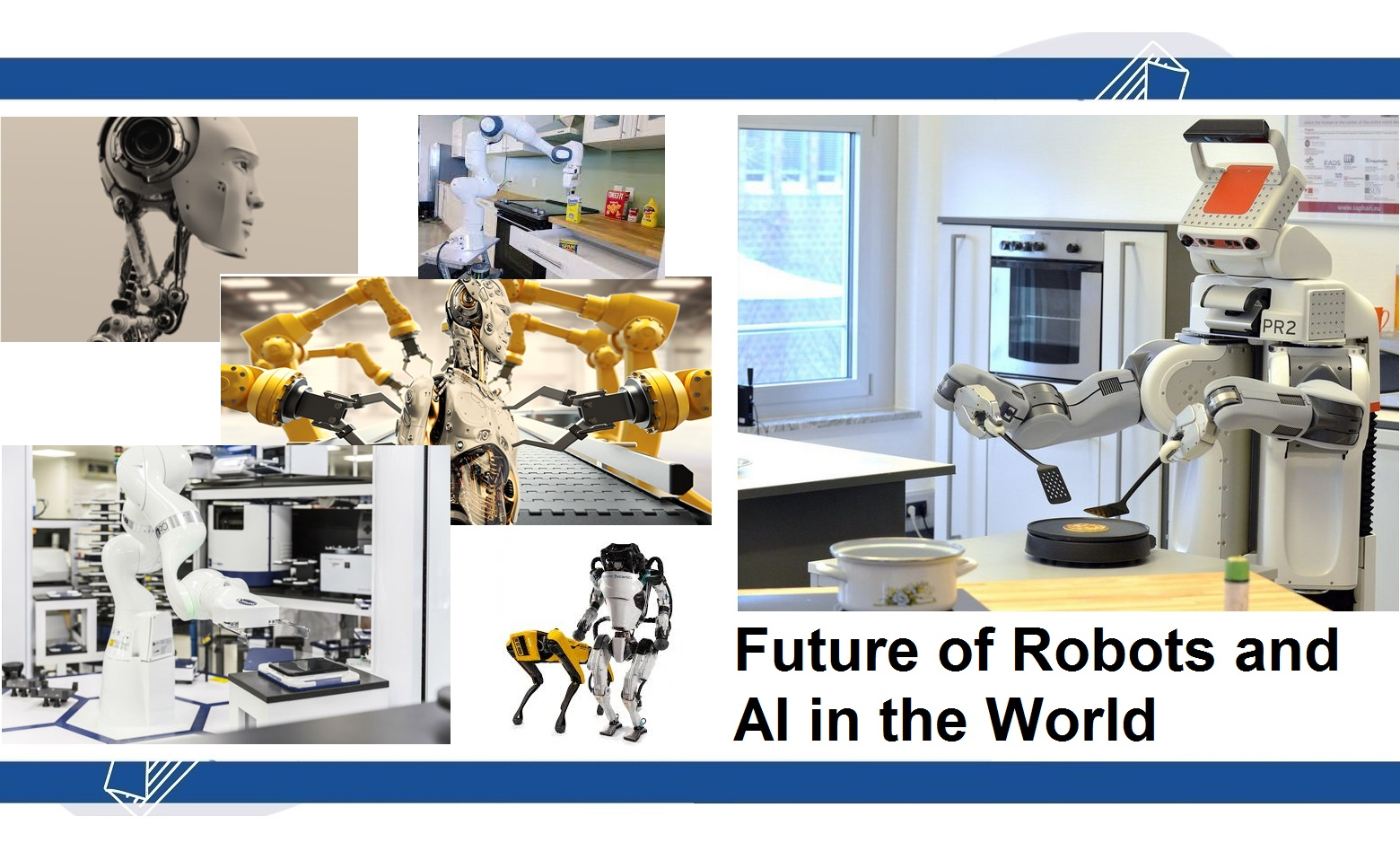 Future of Robots in the world